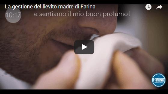 Lievito madre di Farina